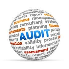 Thin audit image Six Sigma