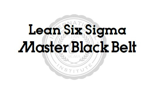 Master Black Belt Application Survey